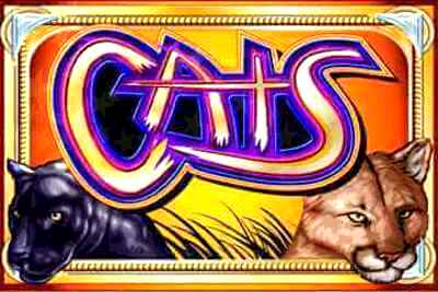 Top Slot Game of the Month: Cats Slot