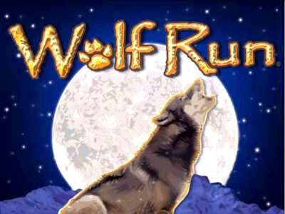 Top Slot Game of the Month: Wolf Run Slots
