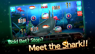 Shark Meet Slot Machine